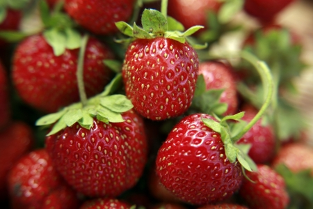 Freshness strawberries closeup photo