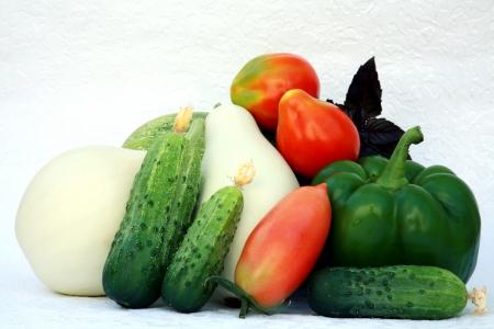 白い背景の上野菜 写真素材