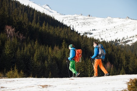 Two male hikers against pine forest in winter mountains passing away from camera. Concept of success living and free traveling, active leisure, health care and well being.