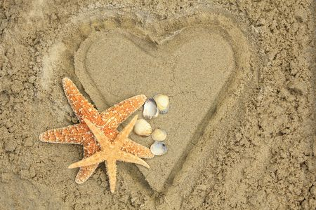 beach animals: Heart with mussels Stock Photo