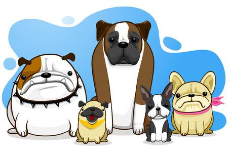 perro boxer: perro, perro de Toro, pug, boxeador, franc�s Bull Dog, Boston Terrier
