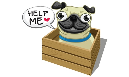 pug in box Illustration