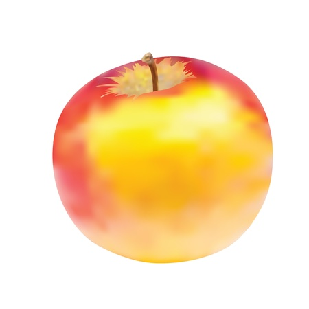 Delicious apple isolated on white background  Vector illustration  Gradient meshes