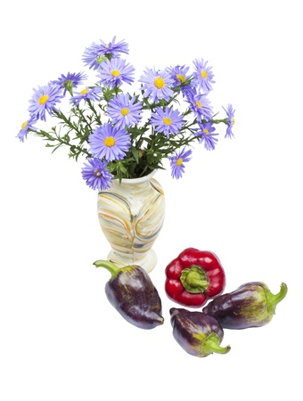 Bouquet of asters and pepper, autumn still life isolated on white background