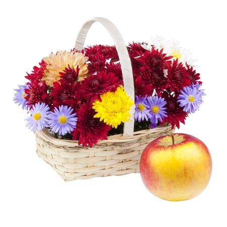 Autumn bouquet of chrysanthemums and apple, still life, isolated on a white background Stock Photo