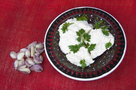 Cottage cheese with parsley and slices of garlic on the red background of the canvas