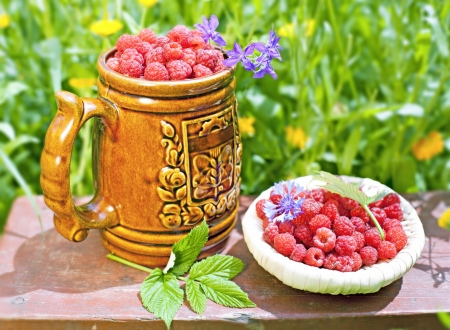 Raspberries on the background of a blossoming flower beds