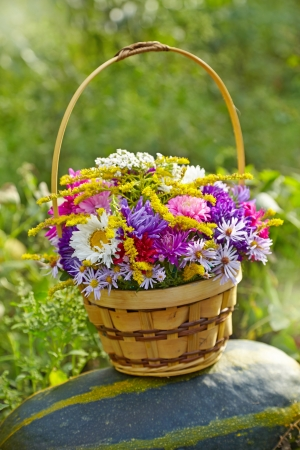 chrysanthemum bouquet in a basket on a pumpkin