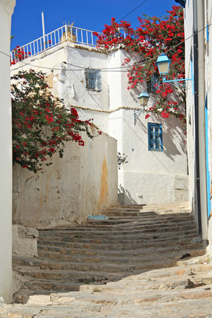 SIDI BOU SAID, TUNISIA -- CIRCA SEPTEMBER 2010: Old city street with old houses and flowering plants. A typical view of the city.