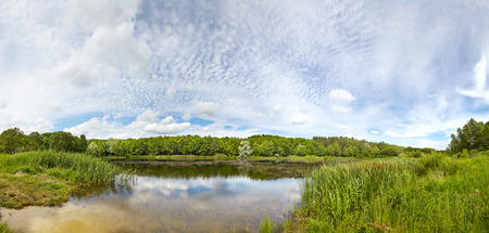 The lake and the forest. Landscape complement a variety and beautiful clouds. Reklamní fotografie