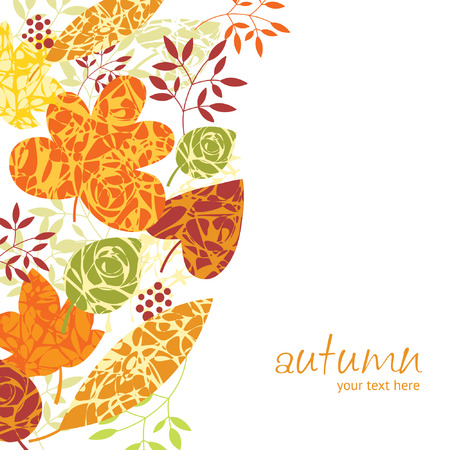 autumn grunge: autumnal leaves on white background