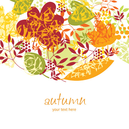 autumnal: autumnal leaves on white background