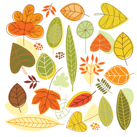 set of autumnal leave Stock Vector - 17035972