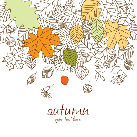 autumn leaf fall  Stock Vector - 17035974