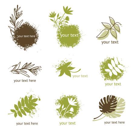 samples: set of floral elements