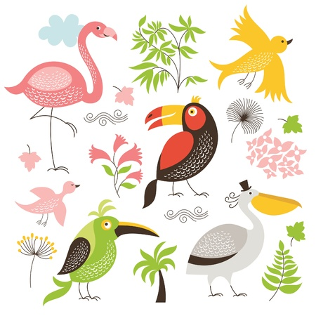 cartooning: set of exotic birds