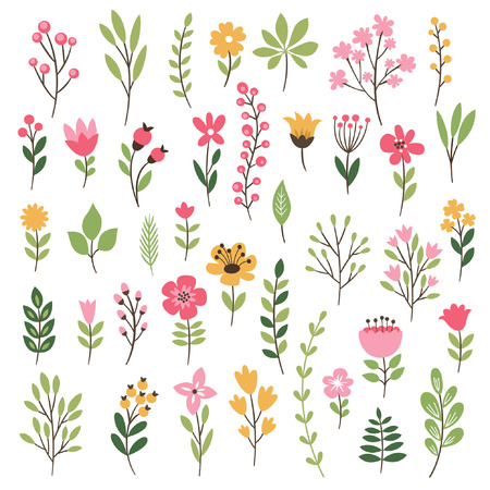 Colorful floral collection with leaves and flowers  イラスト・ベクター素材