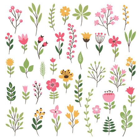 잎과 꽃과 화려한 꽃 모음 스톡 콘텐츠 - 37357936