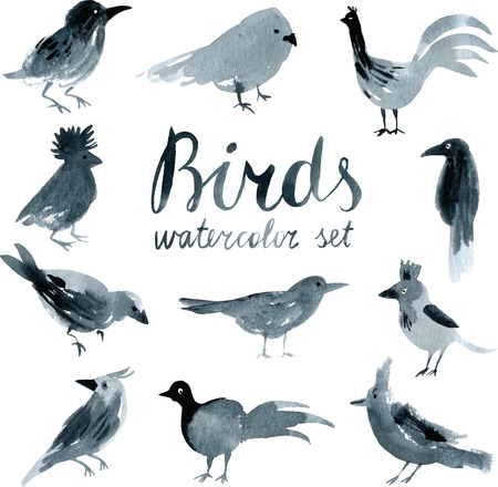 Black and white Watercolor set with birds