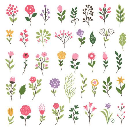 Colorida colección floral con hojas y flores Vectores