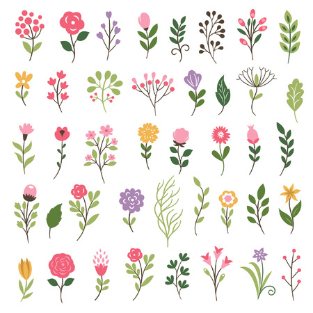 Colorful floral collection with leaves and flowers Stock Illustratie