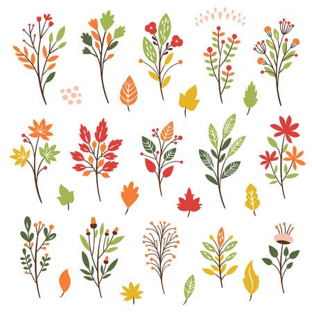 나뭇잎과 꽃, 단풍 화려한 꽃 모음
