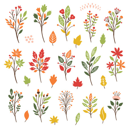 Colorful floral collection with leaves and flowers, autumn leaves