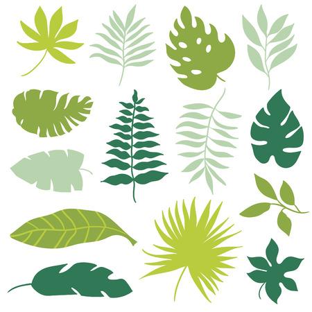 tropisch: tropische Blätter eingestellt