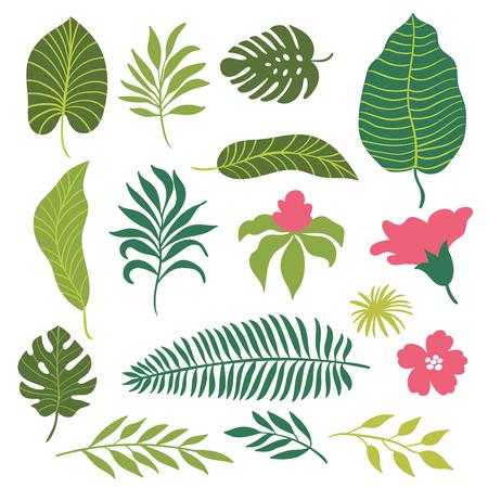 tropical leaves set
