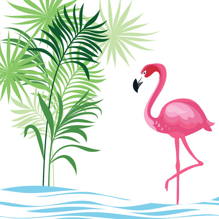 tropical illustration