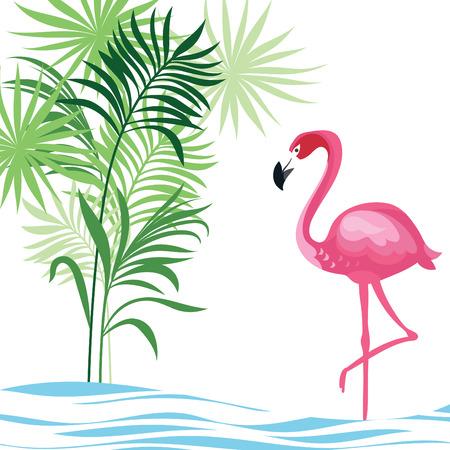 flamenco ave: tropical ilustración Vectores