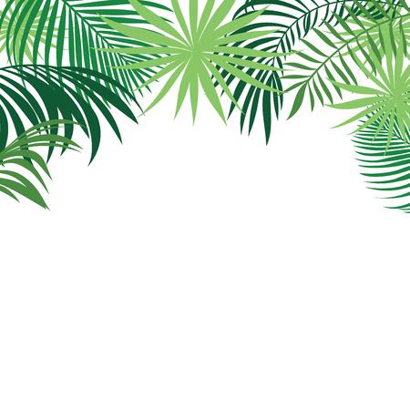 bordure de page: feuilles tropicales bannière