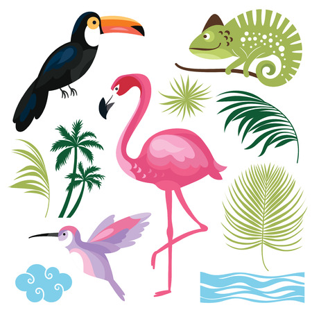 tropical: Tropical Collection