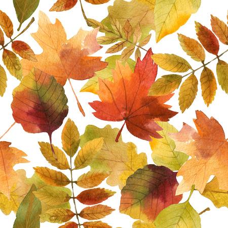 autumn leaves, seamless pattern Stock Photo