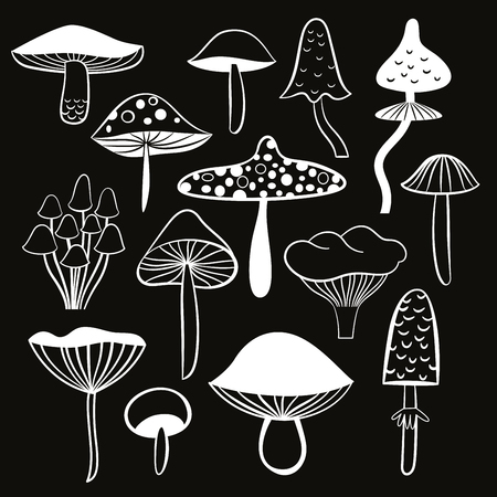 black and white mushrooms 일러스트