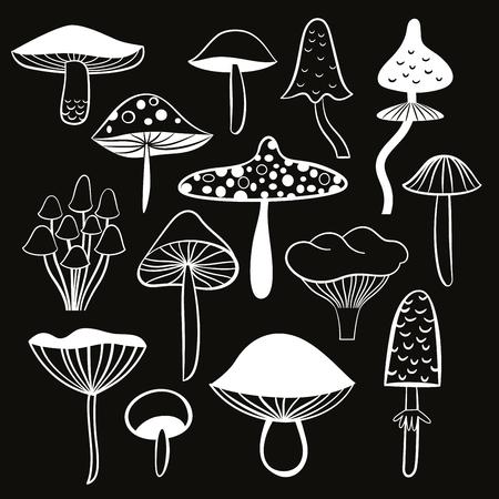 black and white mushrooms Illustration