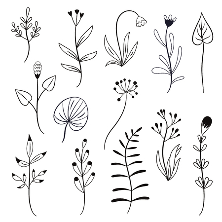 black and white set of vector plants, flowers, branches, white background