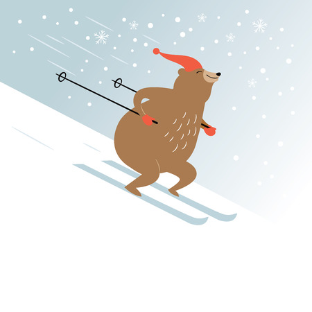 cute bear is skiing
