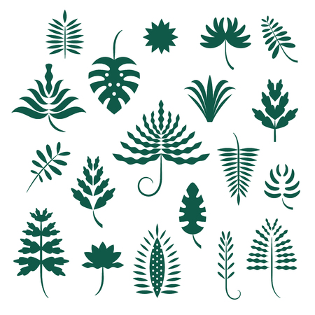 set of abstract stylized tropical leaves