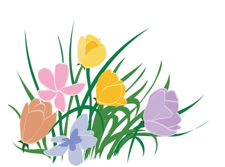 Flowers illustration with clipping path illustration