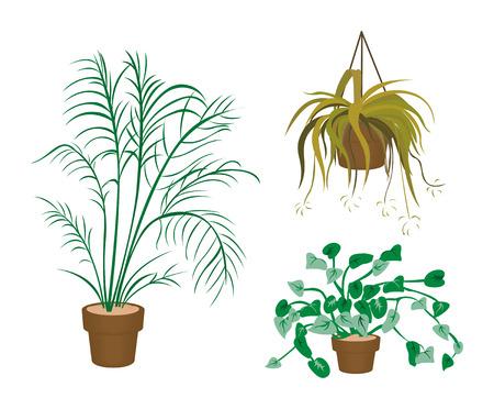 plant pot: Decorating Plants Icons