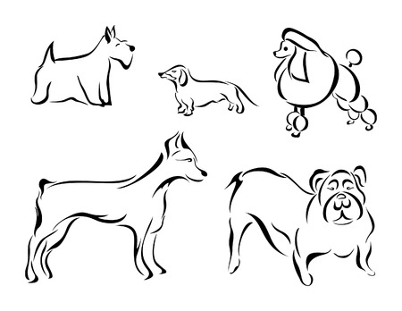 Illustration of Dogs Stock Vector - 2416971