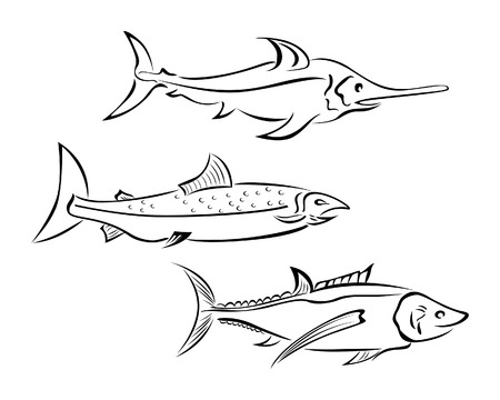 coldblooded: Fish Illustration