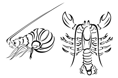 crustaceans: Lobster and Crayfish