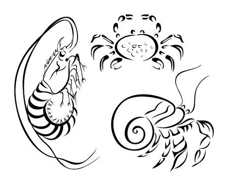 crustaceans: Invertibrates Illustration