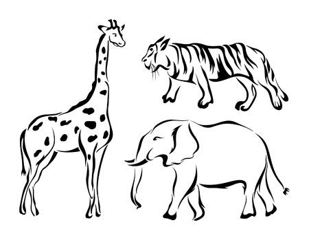 zoo animals: Zoo Animals Illustration
