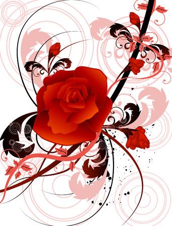 red rose black background: Floral Grunge Design (7 of 10) Illustration