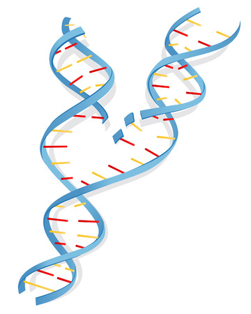 micro organism: DNA Illustration with Clipping Path