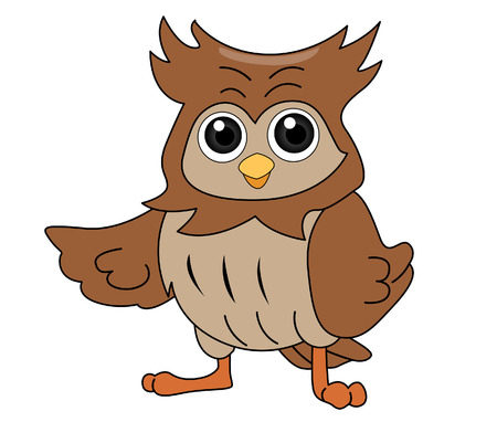 owl illustration: Owl Illustration with Clipping Path