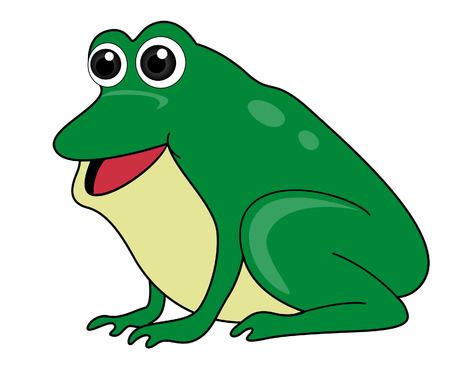 amphibians: Frog Illustration  Illustration